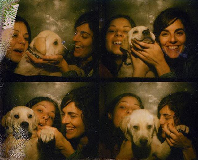 Adorable Photo Booth Puppy Pictures
