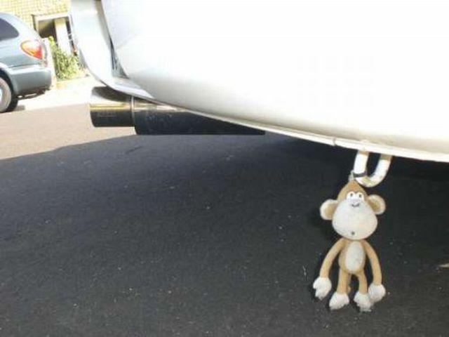 Bizarre Car Accessories