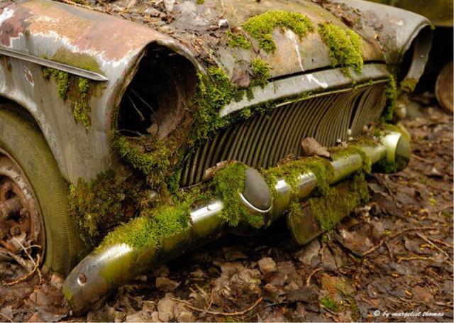 Car Cemetery in Switzerland