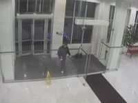 Epic Glass Door Fail