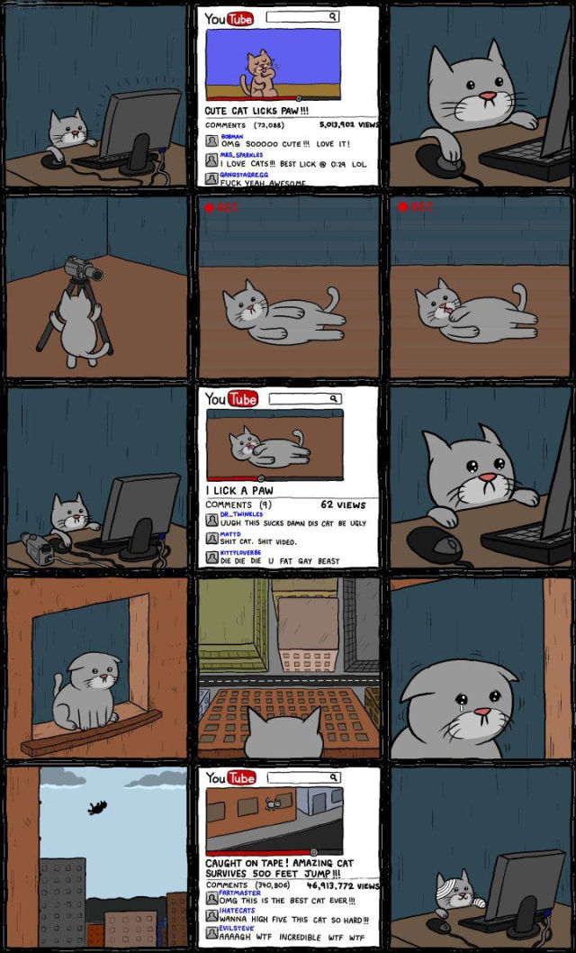 The Story of a Youtube Cat