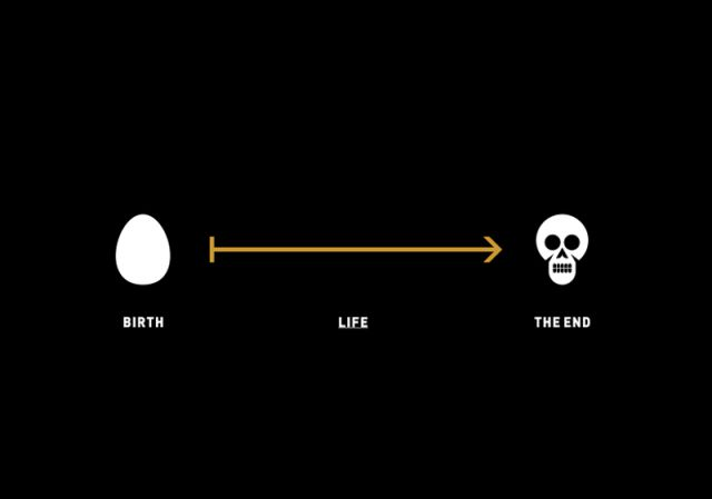 What Life Is Explained Simply
