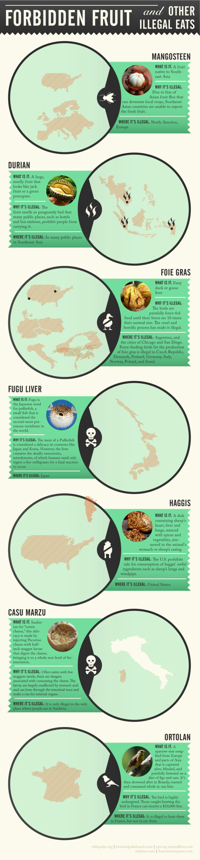 Dangerous and Illegal Foods Infographic