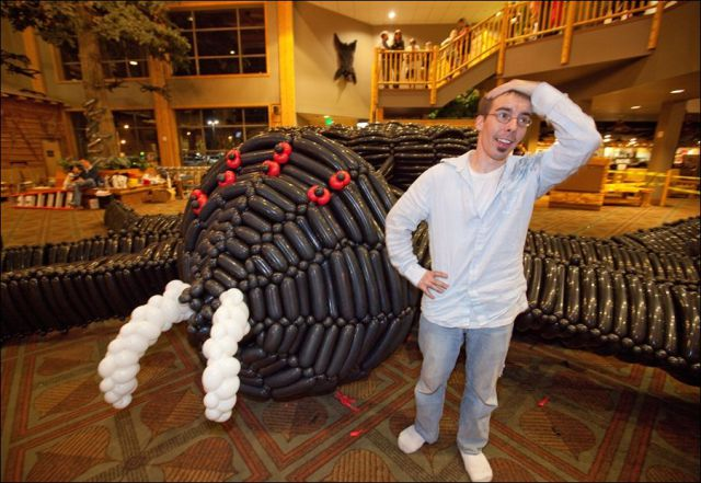 The Largest Modelling Balloon Spider in the World