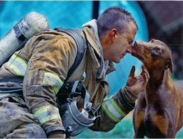 Touching Pictures of Rescued Animals
