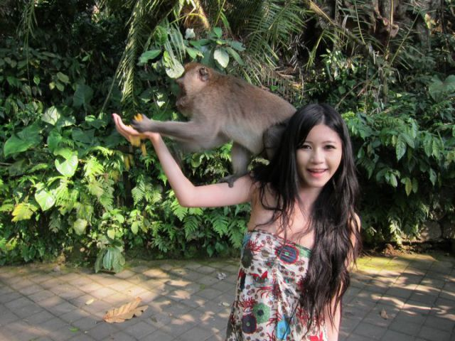 Monkeys Flirting with a Girl