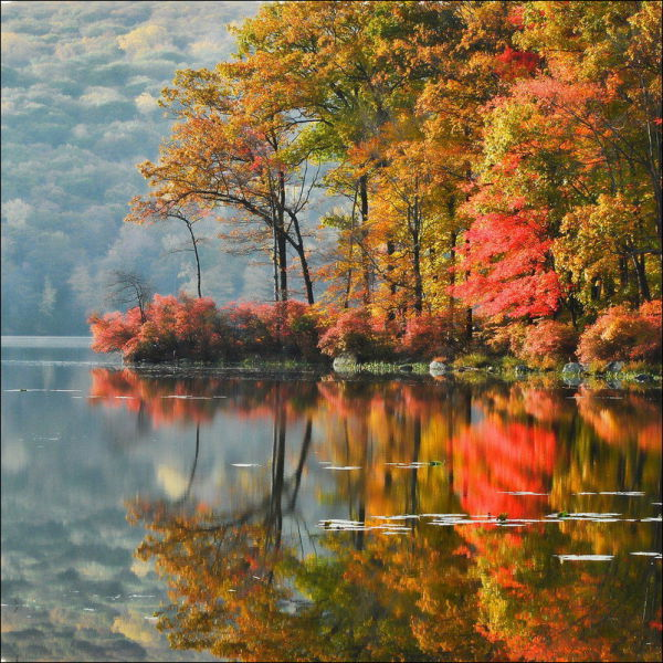 Beautiful Fall in Photos
