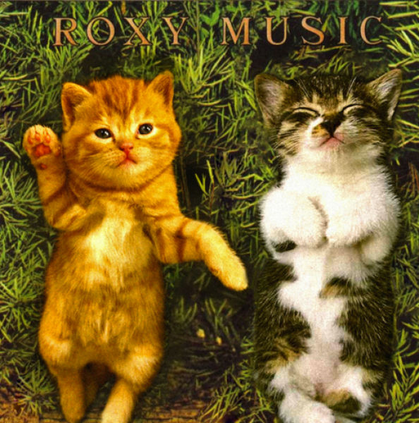 Kittens on Prominent Album Covers