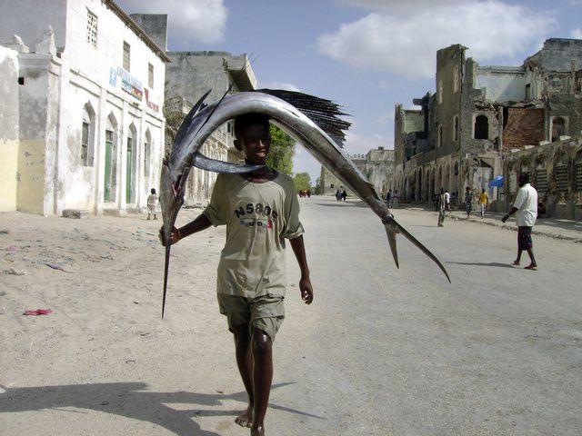 Somali Fishers