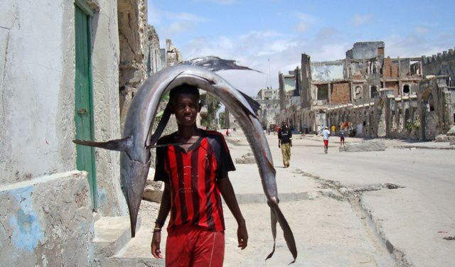 Somali Dhuuqmo Sawiro: Somali Fishers (30 Pics)