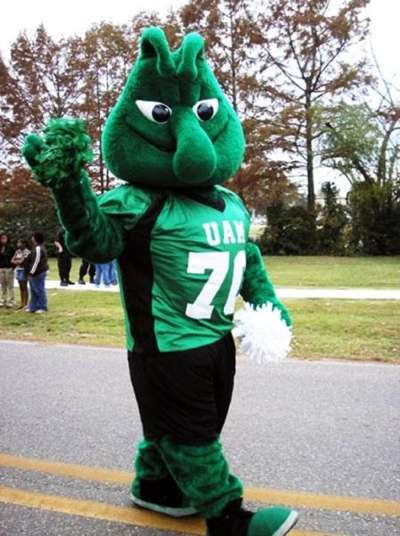 The Strangest College Mascots in the Country