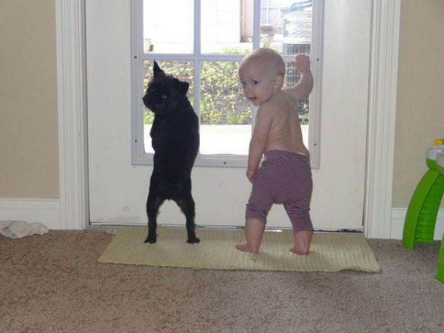 Endless Cuteness: Kids and Pets