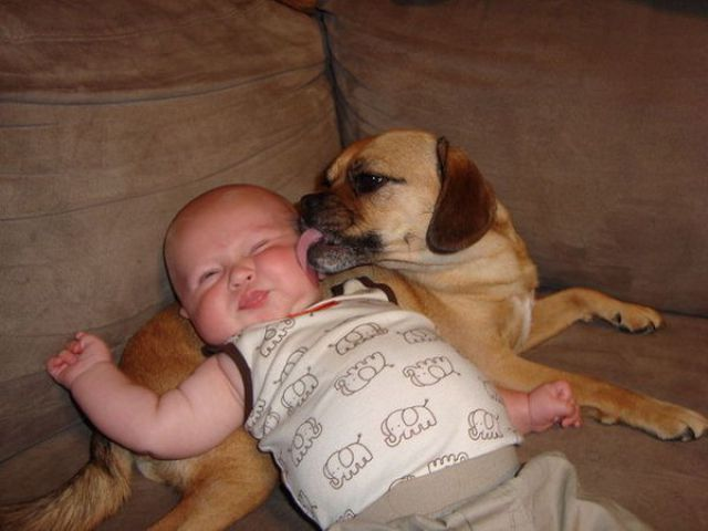 Endless Cuteness: Kids and Pets