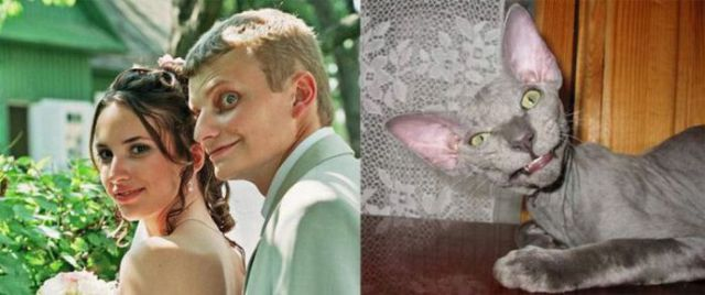 People and Animals Look-Alikes
