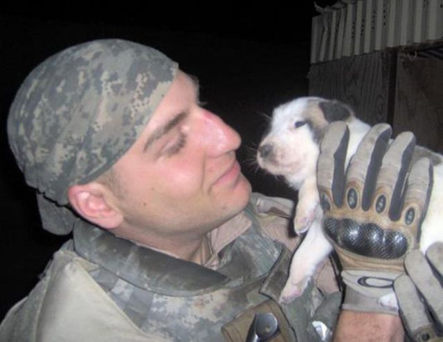 Puppy Hero Gives Hope to a Dead Soldier's Family