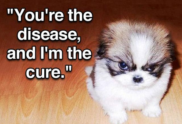 One Badass Puppy Meme