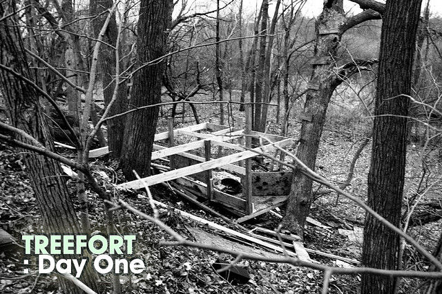 Building a Tree Fort