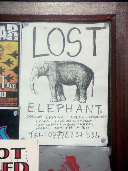 Bizarre Lost & Found Signs