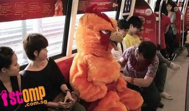 Bird Mascot Shows Who's Boss