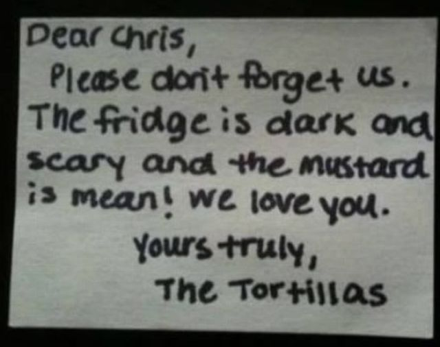 Frantic Fridge Notes