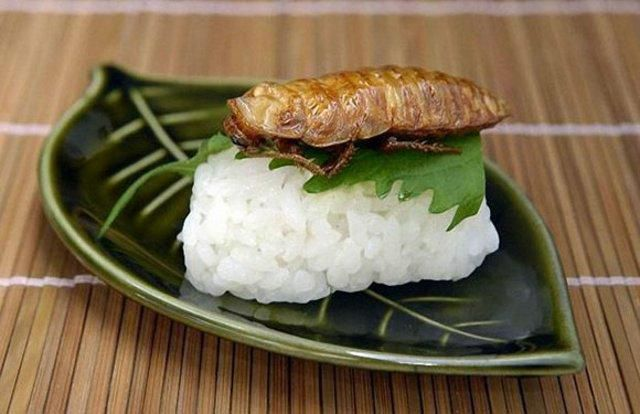 Creepy Crawly Japanese Delicacies