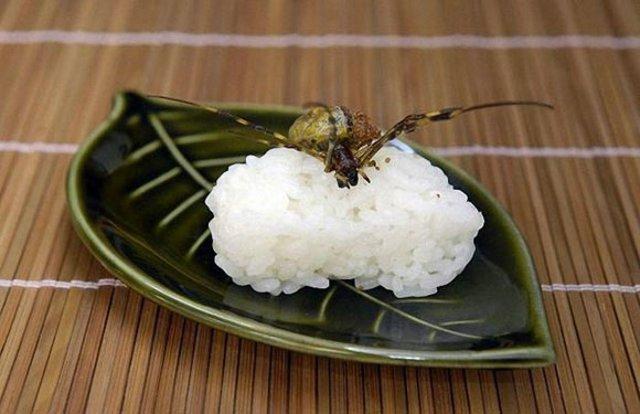 Creepy Crawly Japanese Delicacies