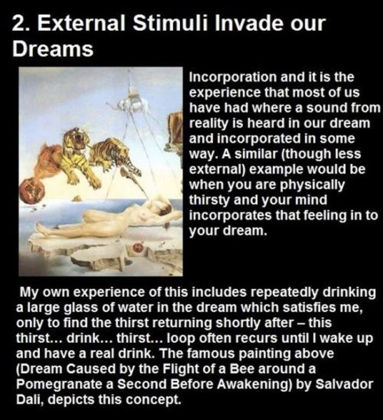 Curious Things About Dreams