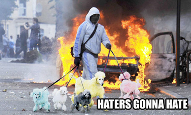 "Epic ""Haters Gonna Hate"" Memes"