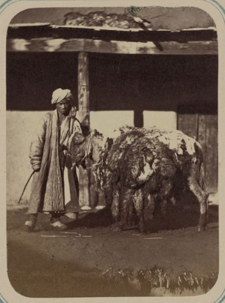 Historical Photos of Central Asia