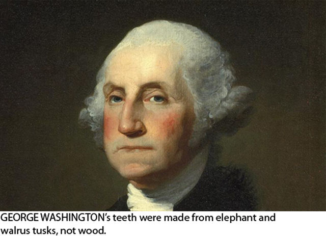 Interesting Facts You Might Not Know about US Presidents