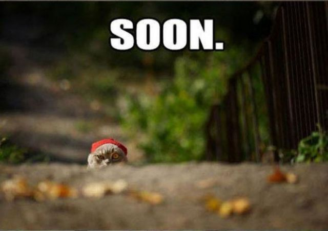 """Soon"" Meme Collection"