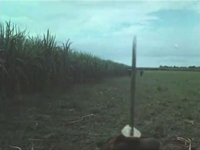 Awesome Trick from a Philippine Action Movie