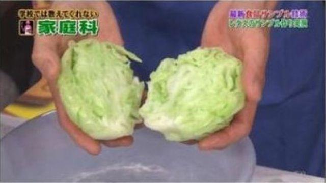 Japanese Fake Cabbage