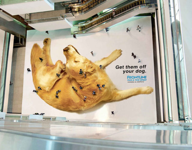 Funny and Creative Ads