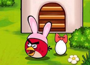 Egg Saving