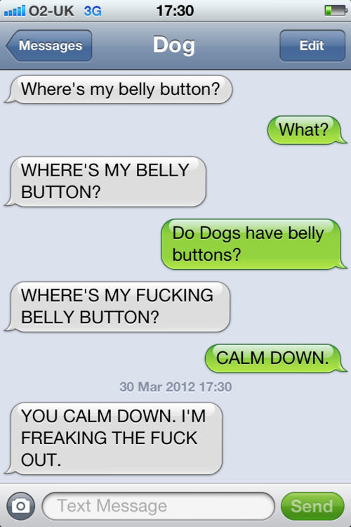 Dog and Owner Texting Messages