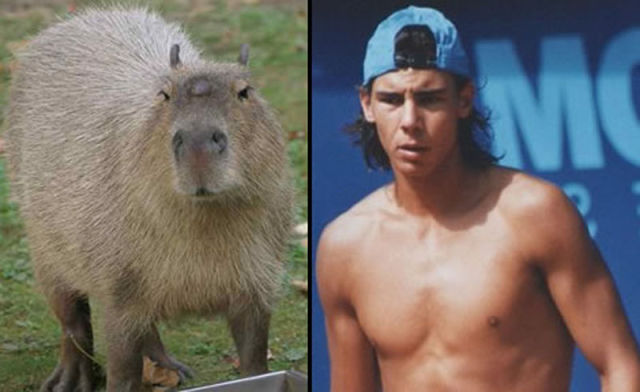 We Just Found a Lookalike of Rafael Nadal