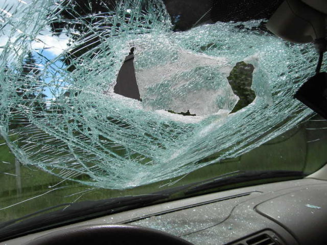 What Happened to This Windshield?