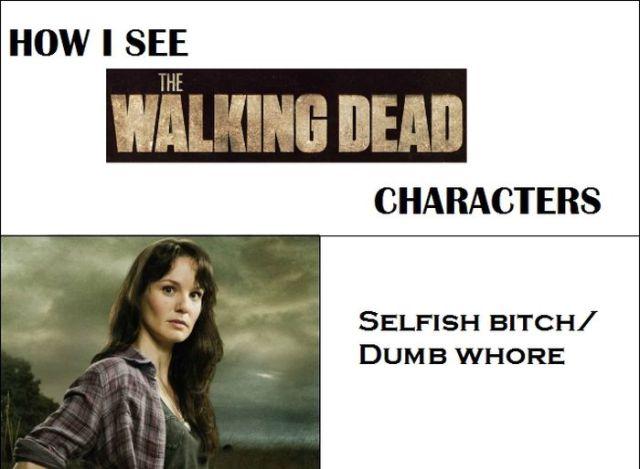 Walking Dead Heroes Described Concisely