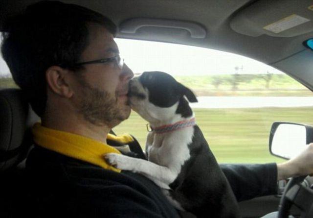 Painfully Awkward Family Photos: Pet Addition