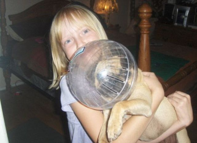 Painfully Awkward Family Photos: Pet Addition