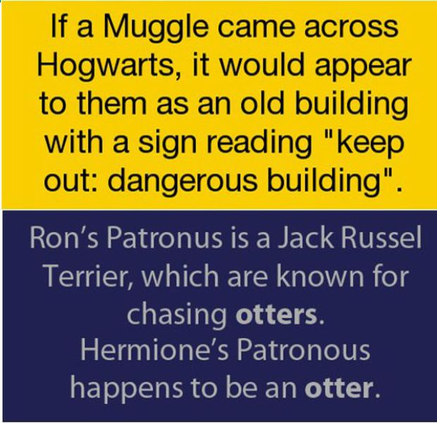 Curious Facts About The Harry Potter World Amazing Amp Funny