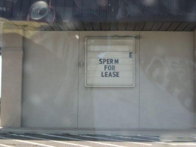 Public Signs: WTF? Part 12
