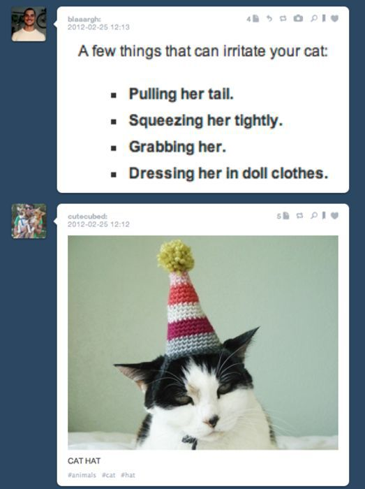 Tumblr Random Pics Funnily Match Each Other
