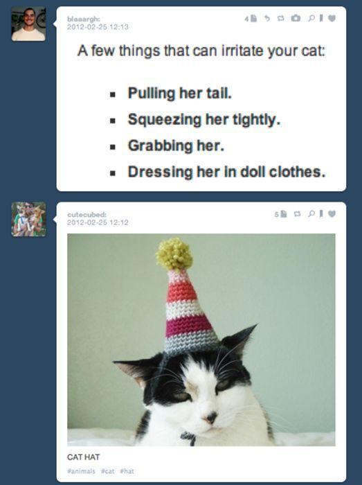 Tumblr Random Pics Funnily Match Each Other