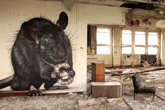 Spectacular Realistic Street Art