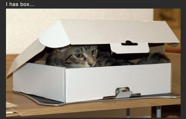 Get Out of My Box!