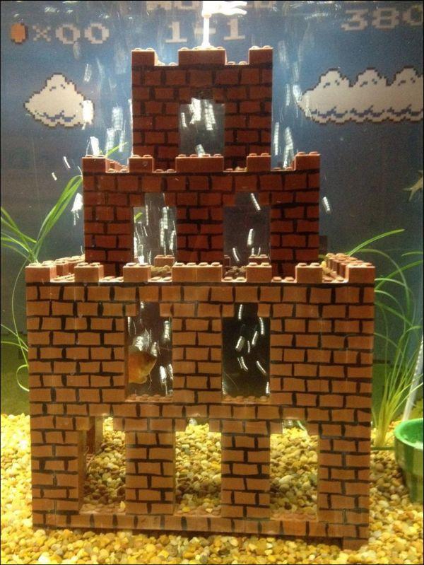 Super Mario Themed Aquarium