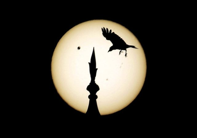 Spectacular Transit of Venus in Photos