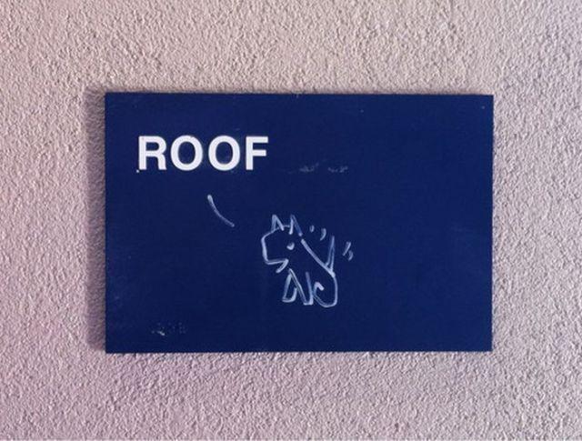 Sarcastic Vandalism